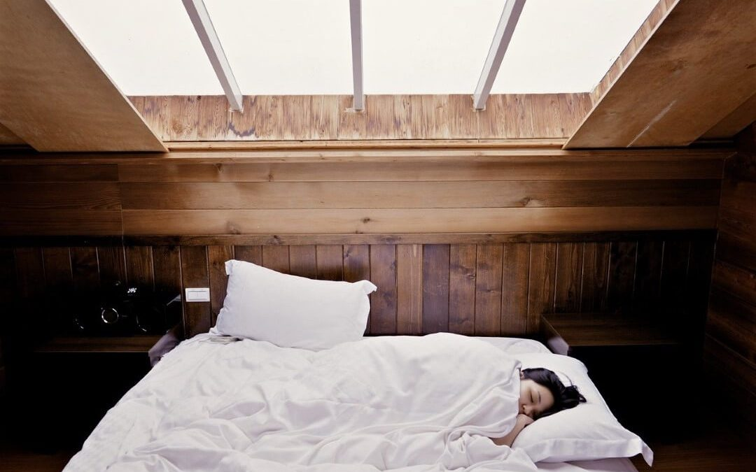 Most Common Pests in the Bedroom