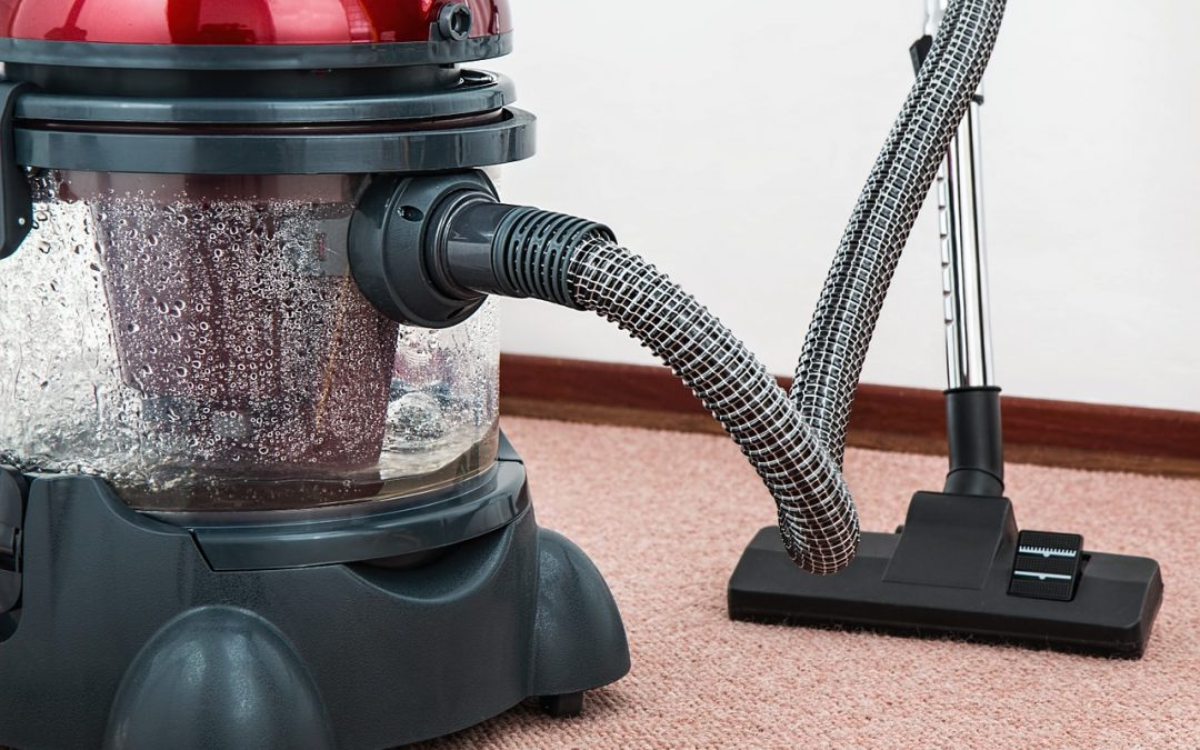 Spring Cleaning… For Bugs. What You Can Do To Keep Bugs Away.