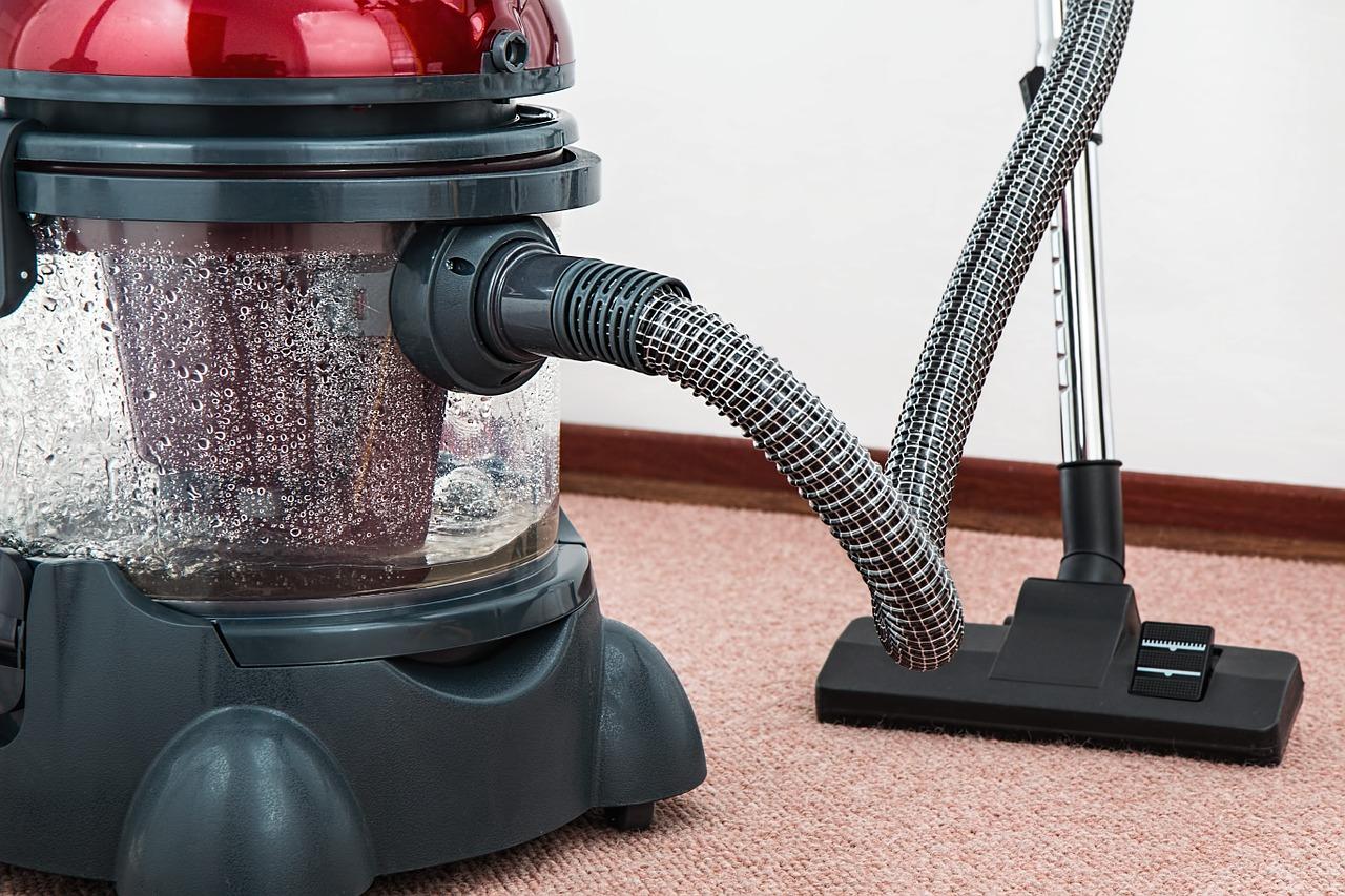 keep bugs away through spring cleaning